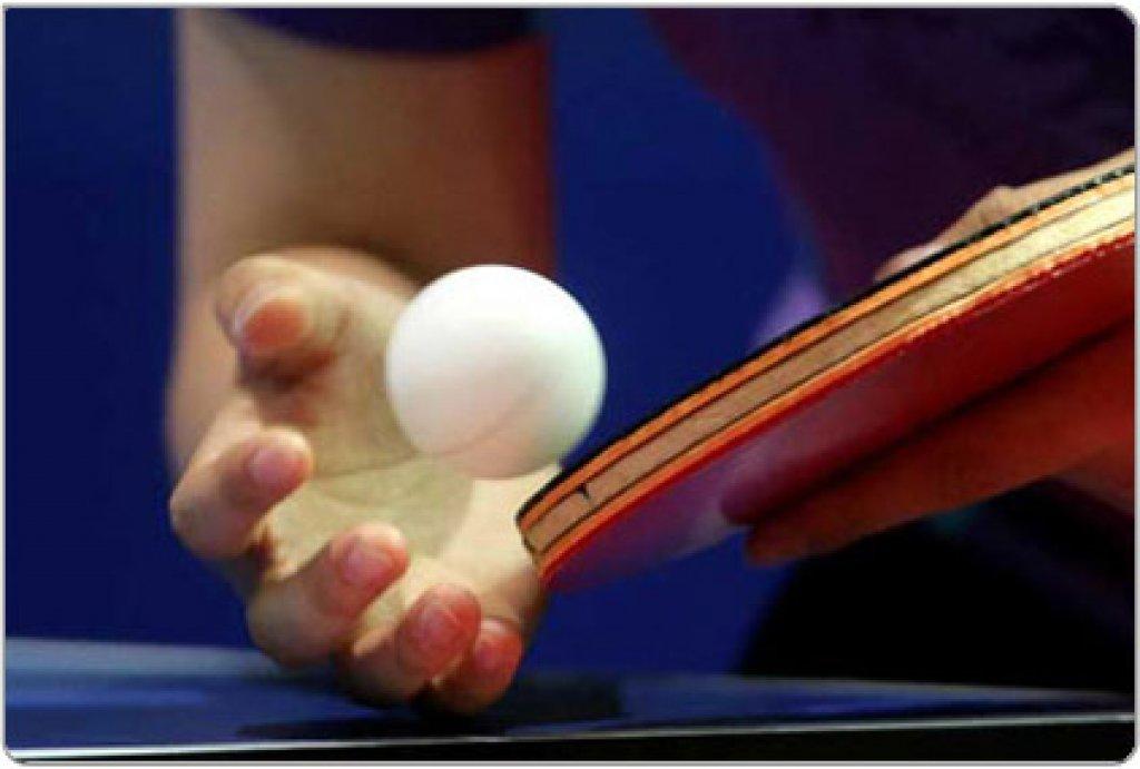 Drużynowy Samorządowy Turnieju Tenisa Stołowego o Puchar Wójta Gminy Płośnica