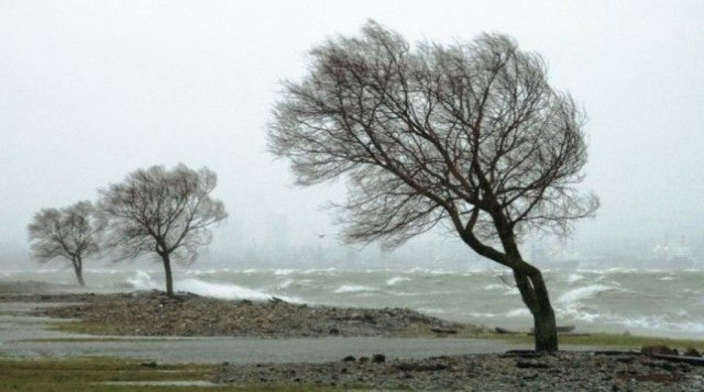 Ostrzeżenie meteorologiczne - silny wiatr