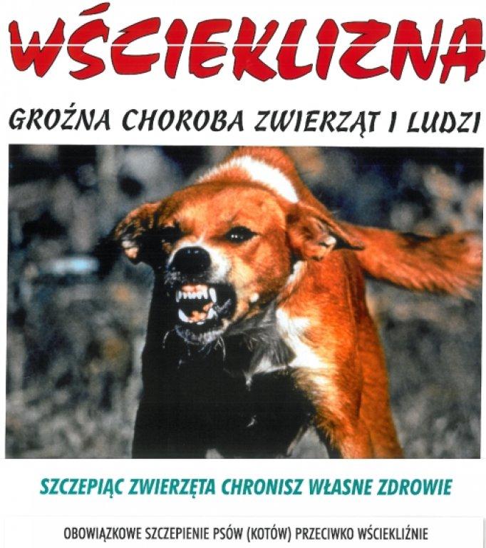 Obowiązkowe szczepienia psów