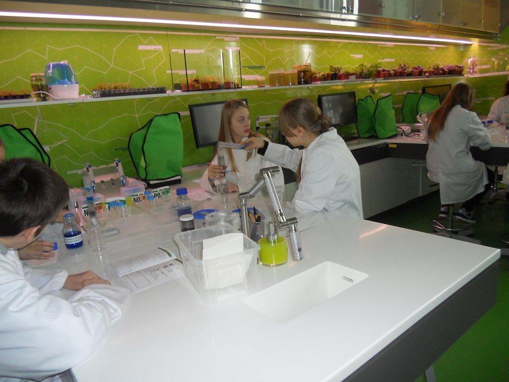 Warsztaty edukacyjne w CNK