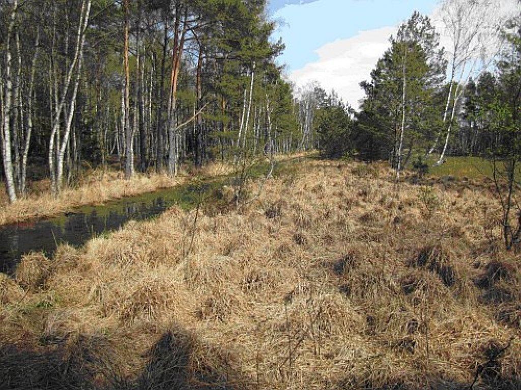 Projekt planu przeciwdziałania skutkom suszy