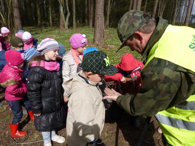 Przedszkole z Rybna z rewizytą w lesie