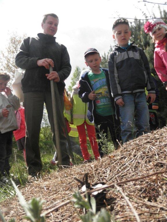 Przedszkolaki dbają o przyrodę