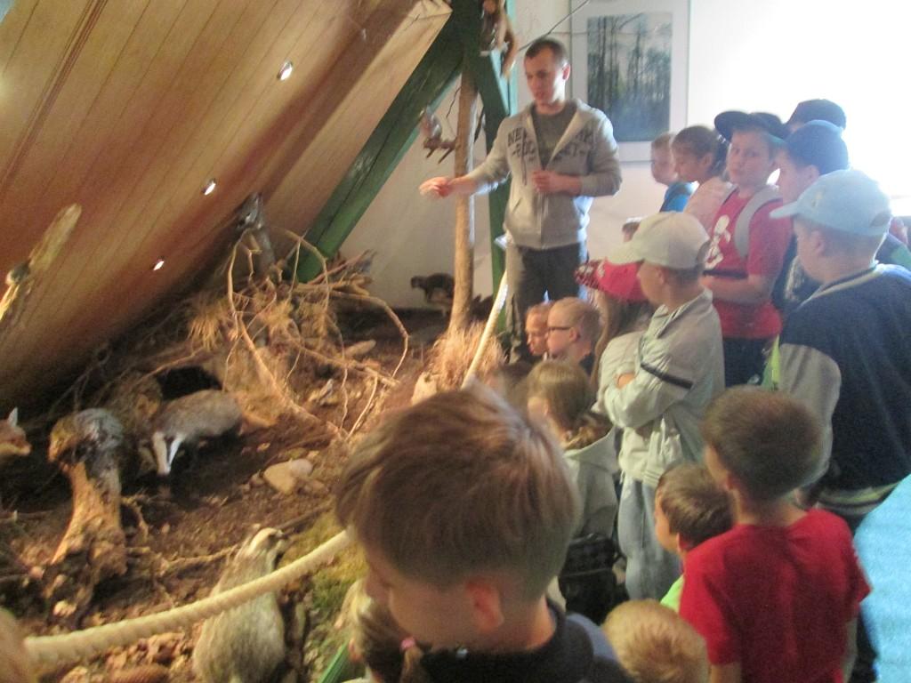 Warsztaty edukacyjne w Welskim Parku Krajobrazowym