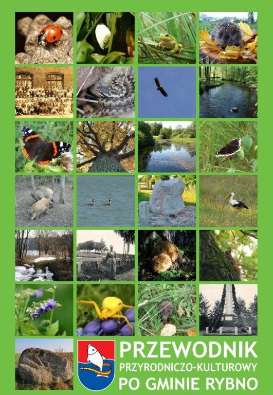 Zakończenie projektu z zakresu edukacji ekologicznej