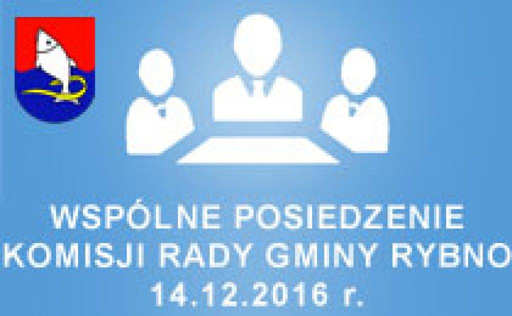 Posiedzenie Komisji Rady Gminy Rybno - 14.12.2016r.