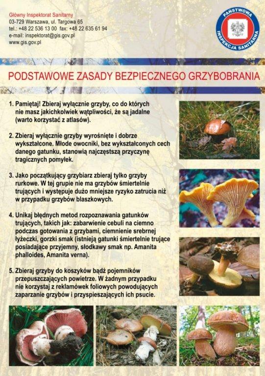 Uwaga Grzybiarze!