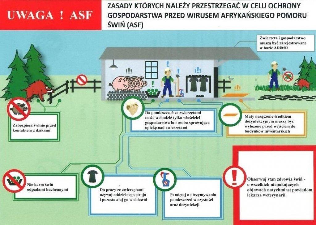 Uwaga hodowcy trzody chlewnej! Szkolenie z zakresu ASF