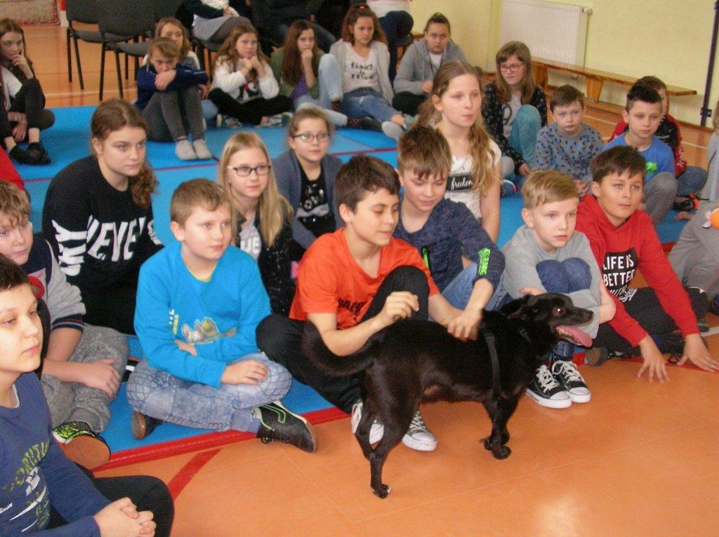 'Podaj Łapę' w Szkole Podstawowej im. ks. Jana Twardowskiego w Rumianie